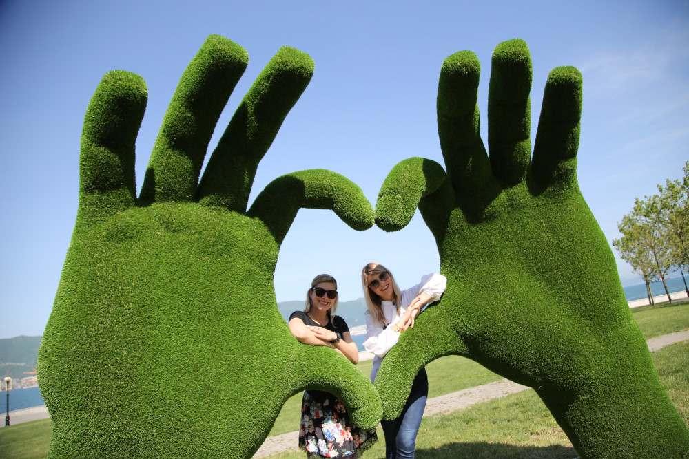 У Новороссийска зеленые руки