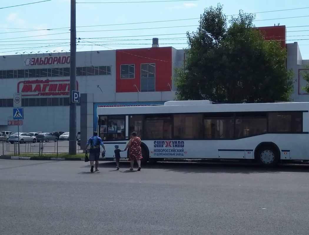 «Уроки безопасности» нановороссийских дорогах