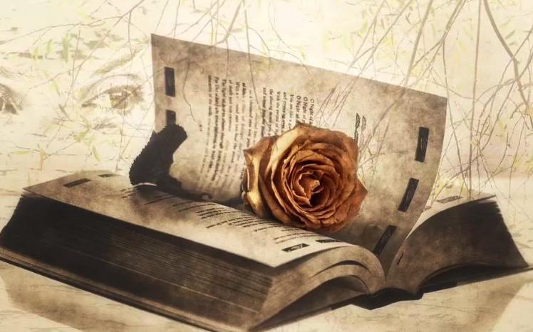Новороссийских поэтов приглашают на творческое соревнование
