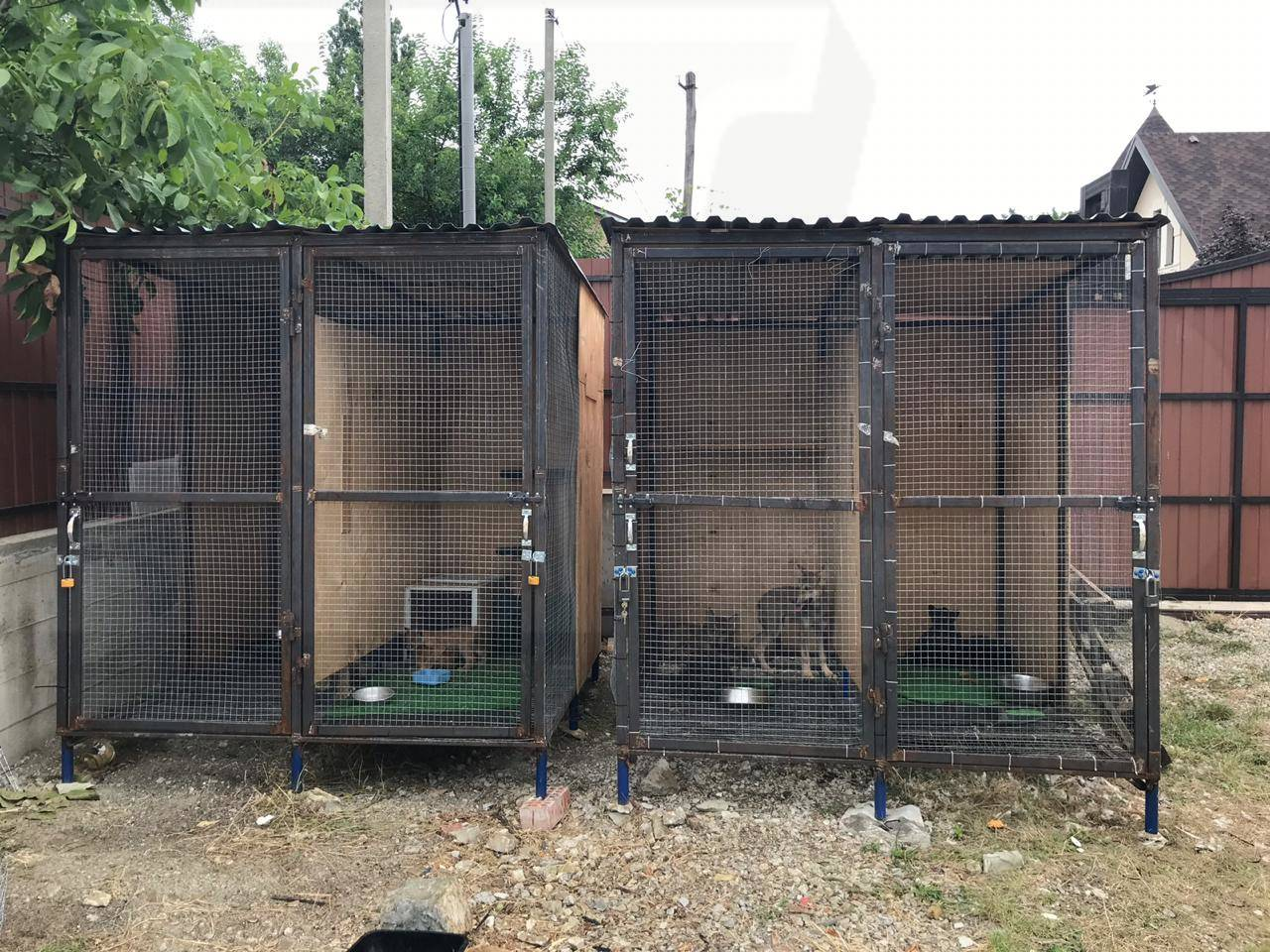 Тюрьма для диких животныхпод Новороссийском: факты искажены?