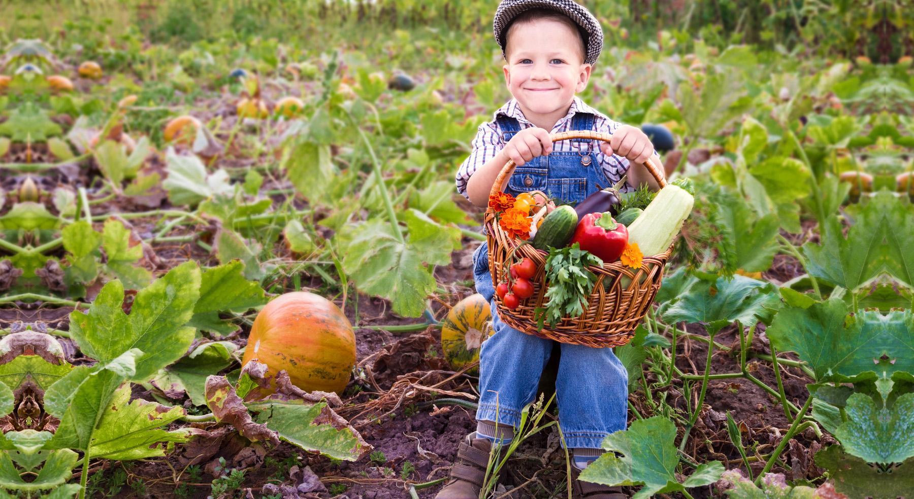 Новороссийцы согласны на тяжелый труд, чтоб прокормить семью