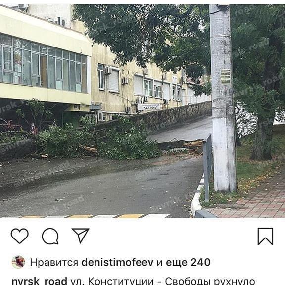 В Новороссийске из-за ветра пострадали люди