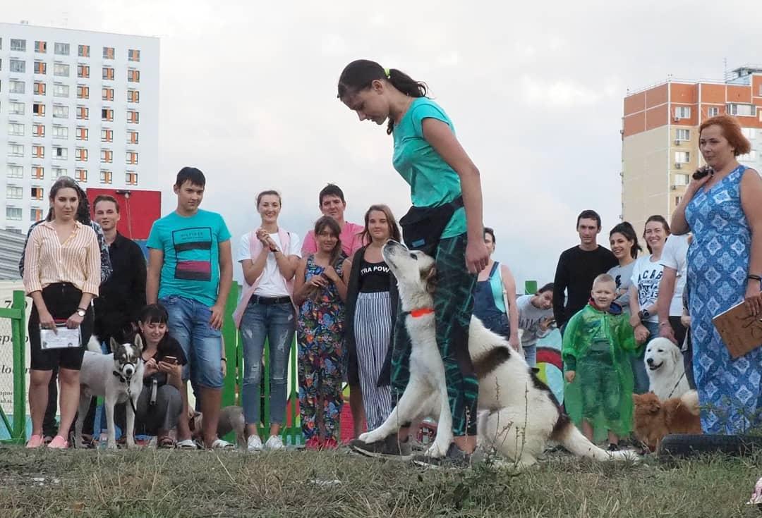 Открытию вНовороссийске площадки для собак непомешало даже штормовое предупреждение