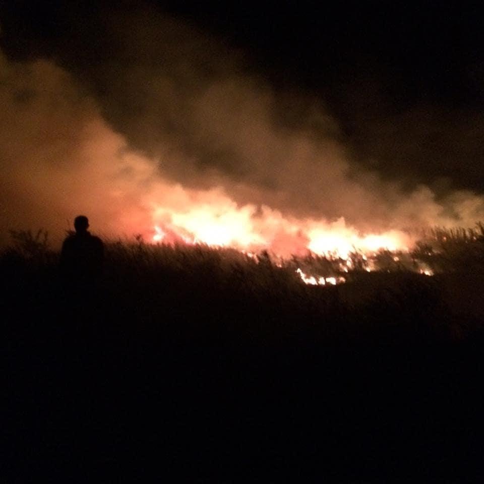 Самый сложный пожар этого лета потушили под Новороссийском