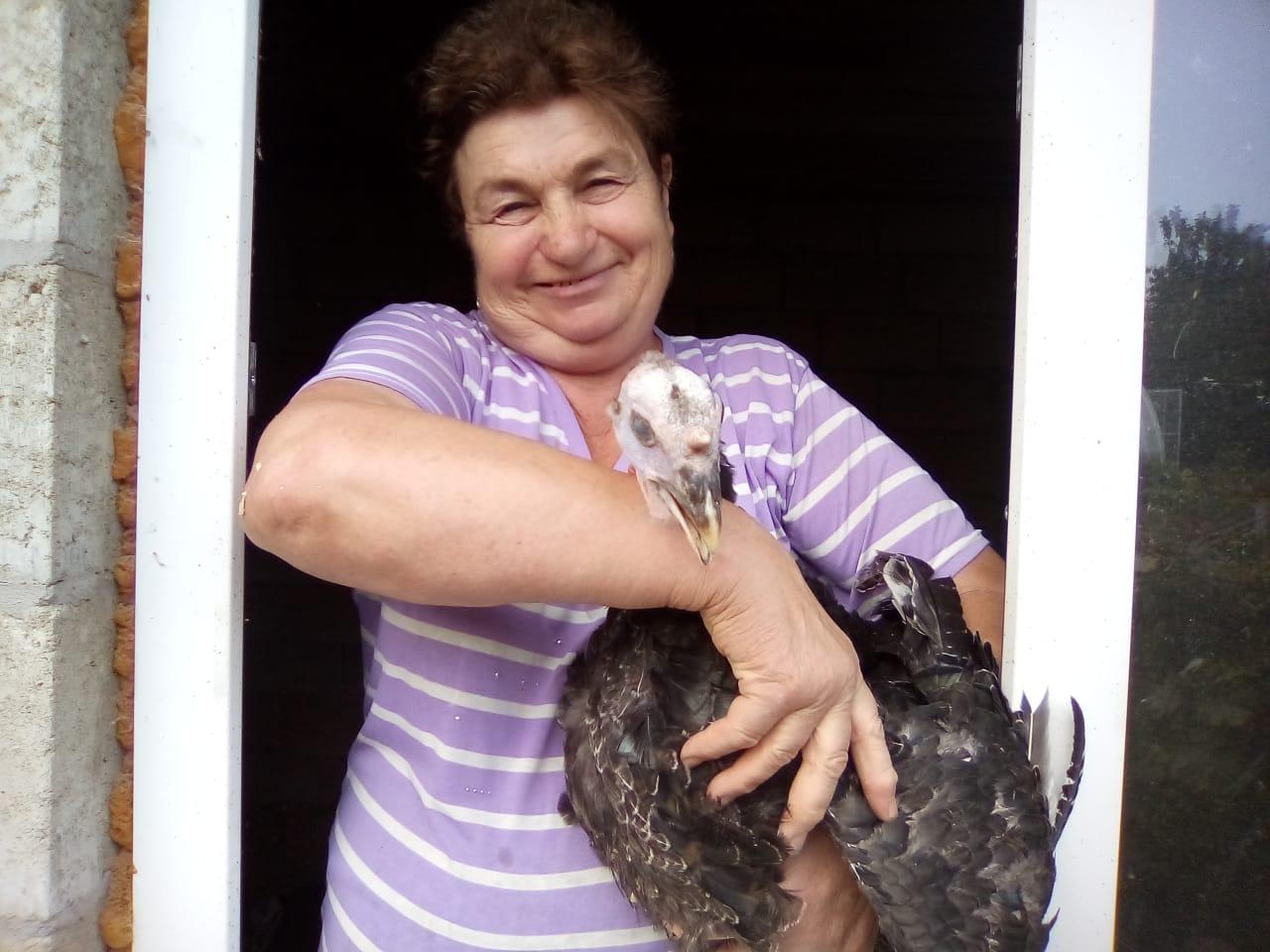 В Новороссийске народ потянулся к птице