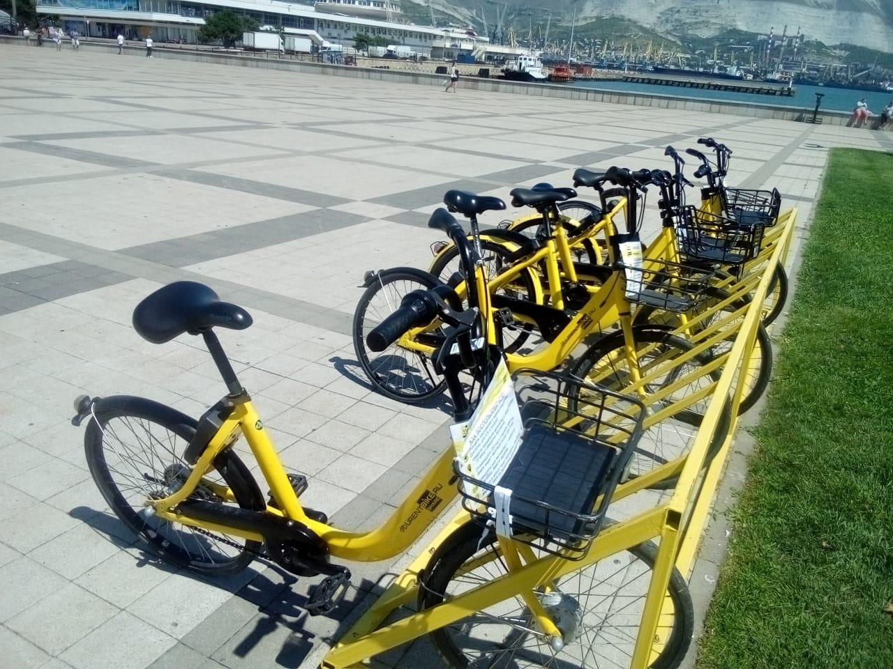 Велошеринг в Новороссийске набирает обороты