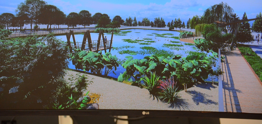 Южные пруды в Новороссийске превратят в парк отдыха