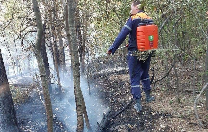 Под Новороссийском тушили лесной пожар