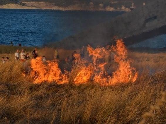 Пожар на Малой Земле в Новороссийске уничтожил краснокнижные и порадовал фотографов
