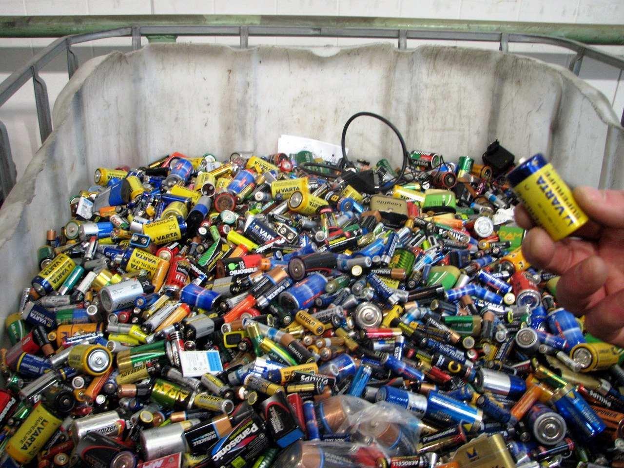 В Новороссийске пройдет сбор опасных отходов