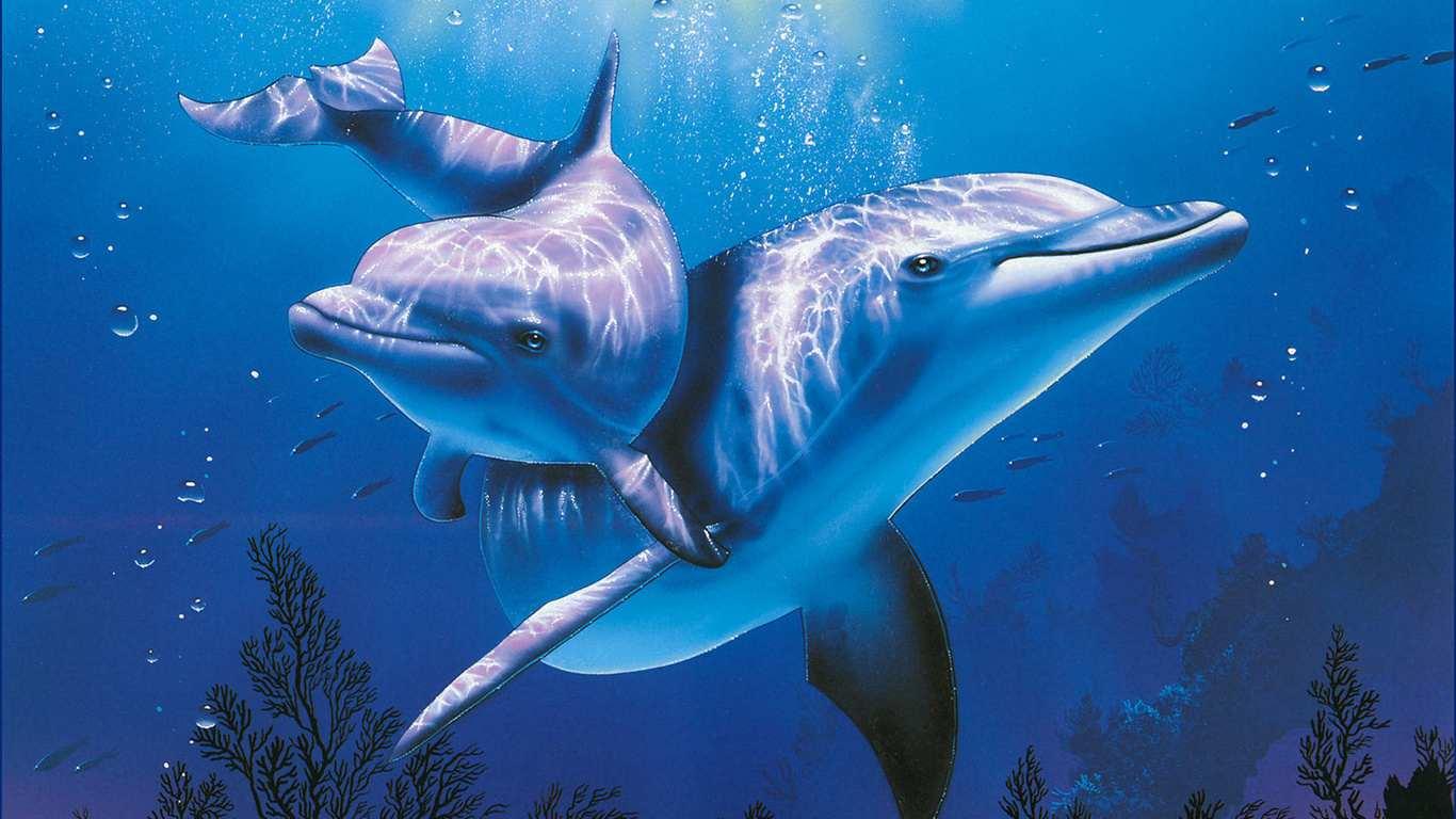 Дельфинам нравится Новороссийск и Геленджик