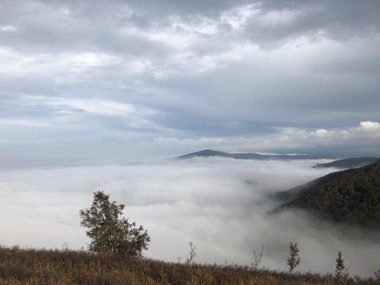 НаНовороссийск опустились туманы