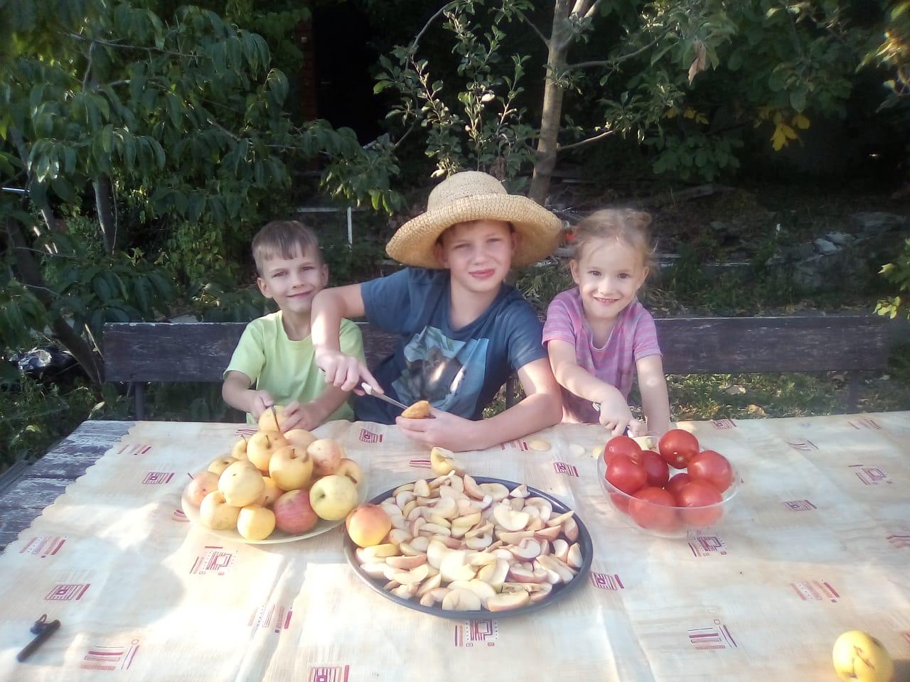 Новороссийцы на зиму сушат арбузы