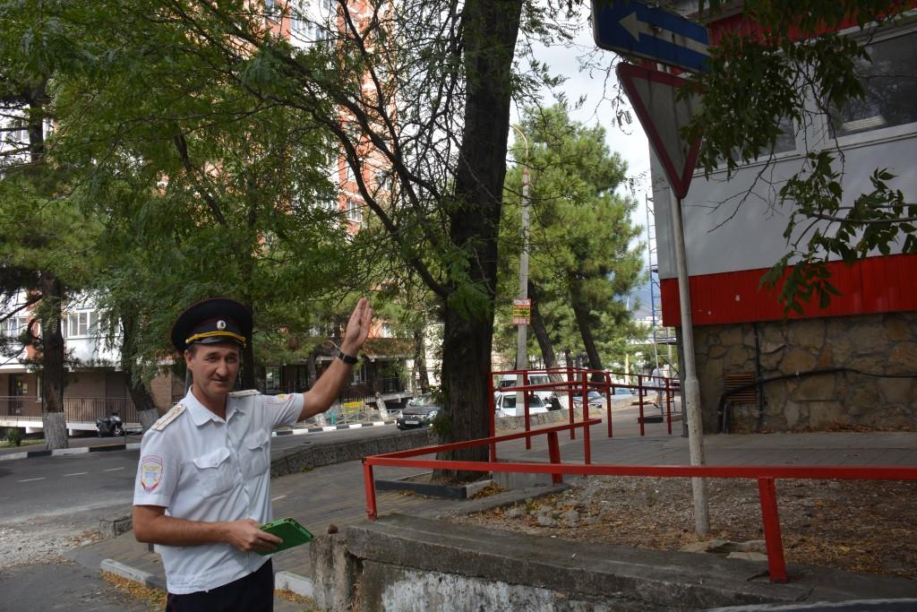 В Новороссийске часть дорожных знаков закрыта ветками деревьев