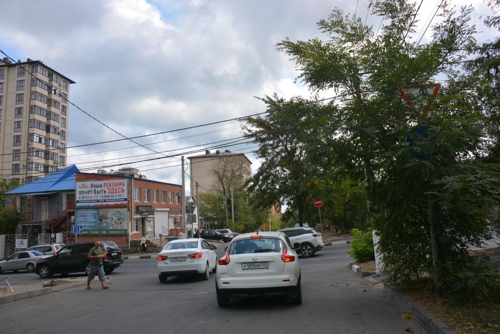 В Ноороссийске часть дорожных знаков закрыты ветками