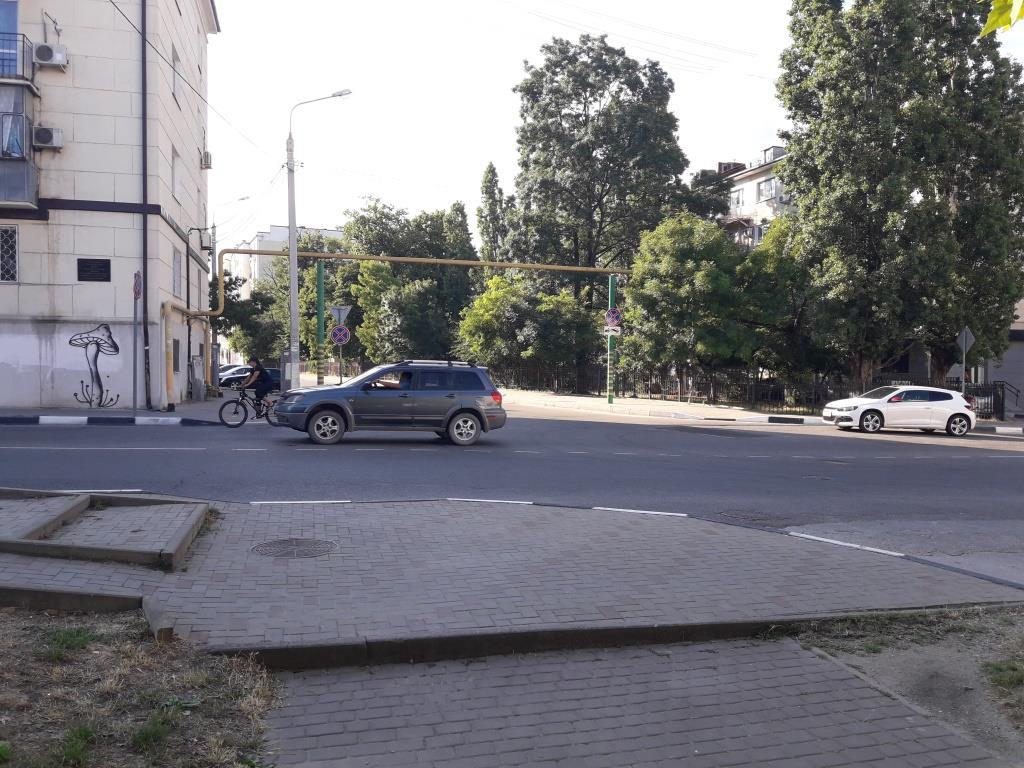 В Новороссийске автовладелец полтора года судился за знак в кустах