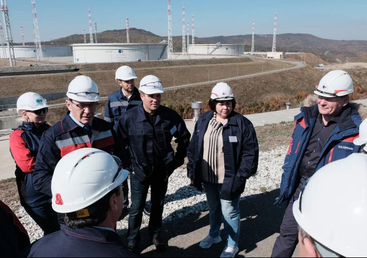 ВНовороссийске нанефтяных резервуарах КТК свили гнезда ласточки