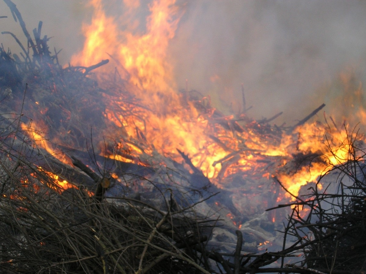 В Новороссийске каждый день горят сухая трава и мусор