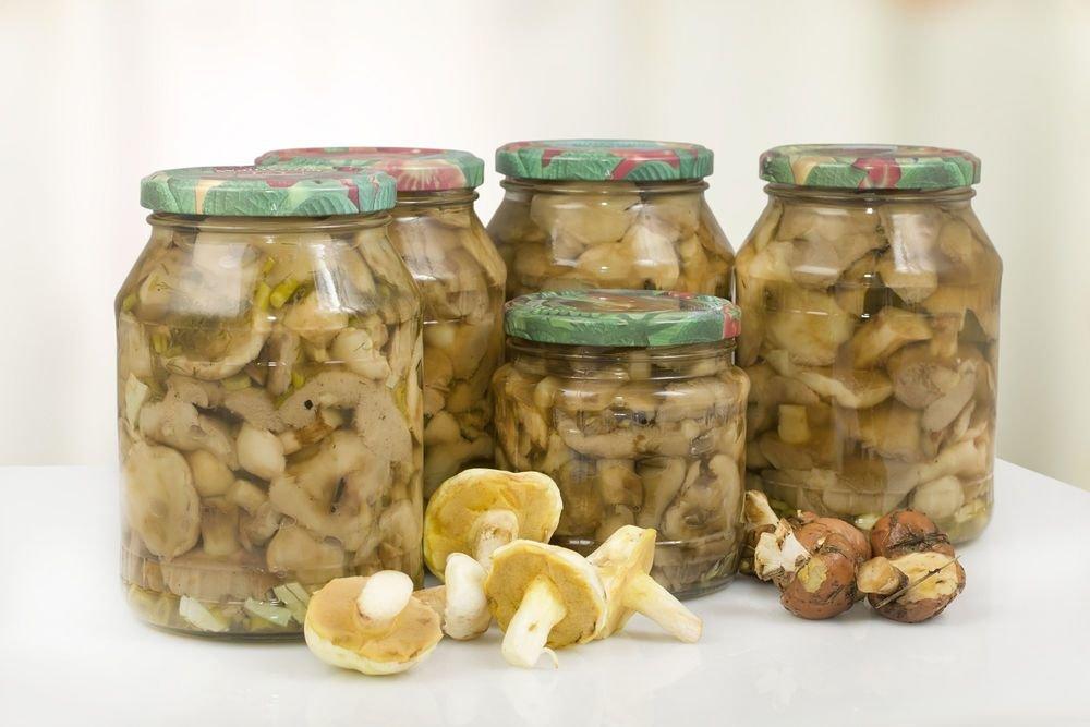 В Новороссийске есть грибы опасно.