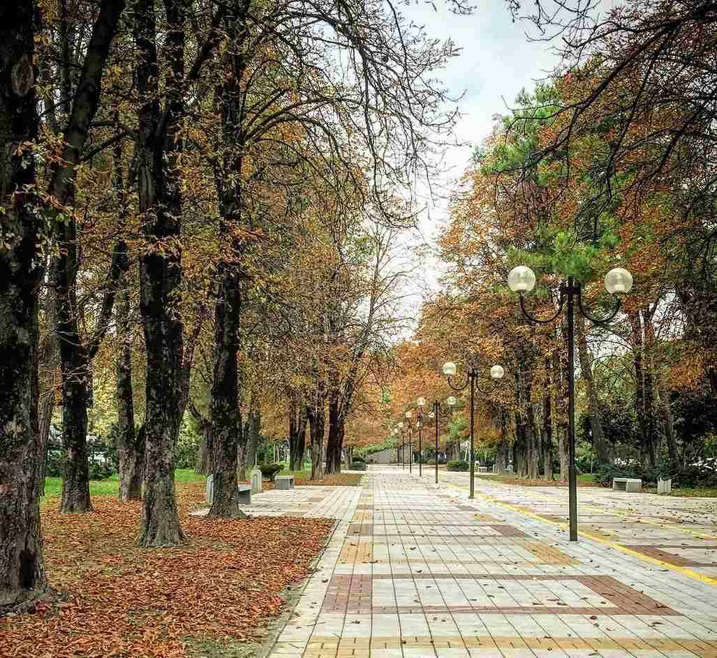 Осень в Новороссийске побила рекорды по сухости, а не по температуре