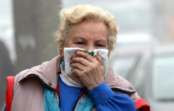 В Новороссийске утром пахло не розами
