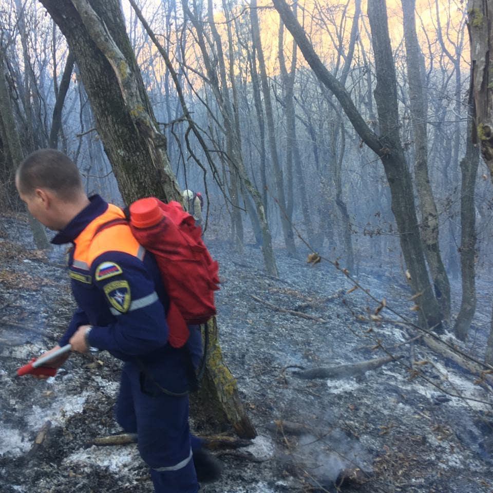 Снова горел лес под Новороссийском