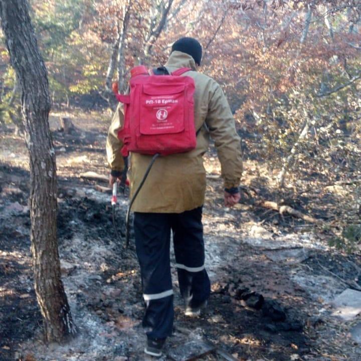 И снова в Новороссийске чуть не сгорел лес