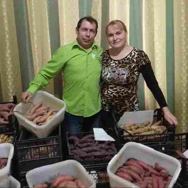 В Новороссийске зимой начали думать, как вырастить огурдыню, ангурию, бамию и просто томаты