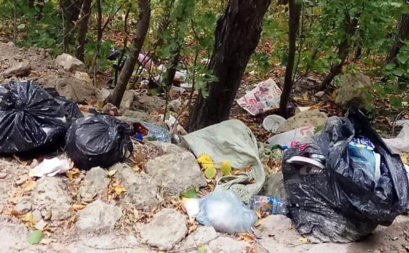 Неберджаевское водохранилище ждет нетолько дождя, ноиактивистов науборку мусора