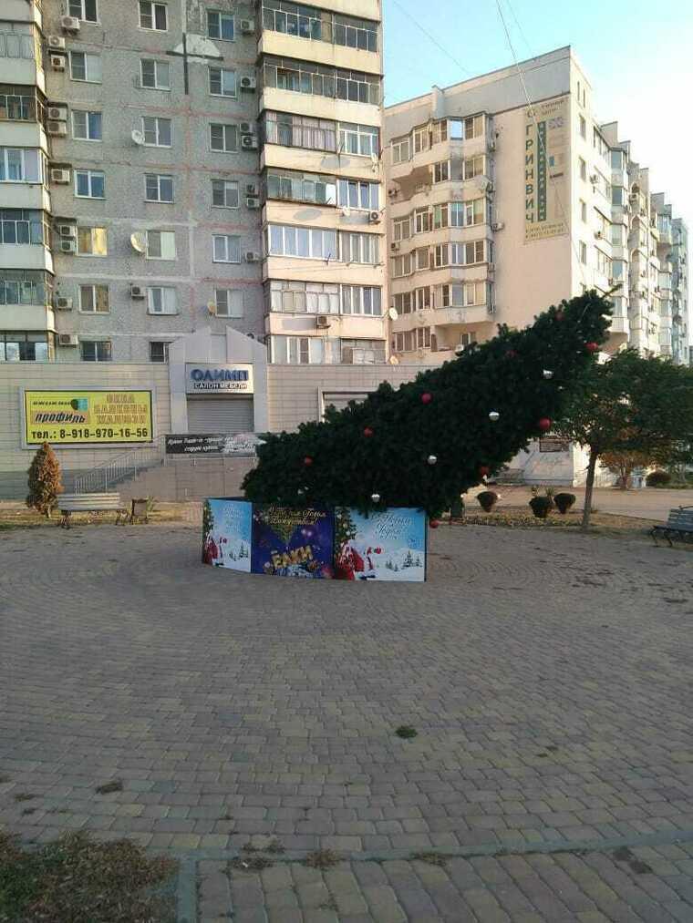 Норд-ост в Новороссийске ломает деревья
