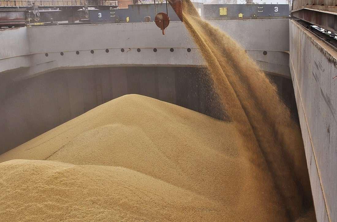 Перевалка зерна через Новороссийск опять вырастет