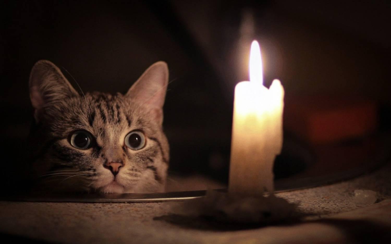 Отключения электричества в Новороссийске 23 декабря 2019