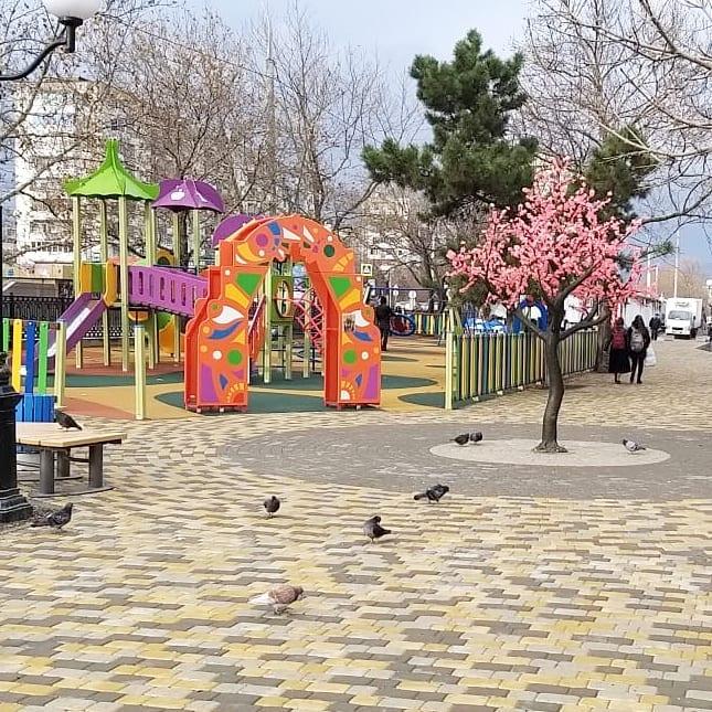 В Новороссийске хулиганы оборвали цветы сакуры в новом сквере