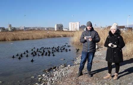 В Новороссийск прилетели поганки