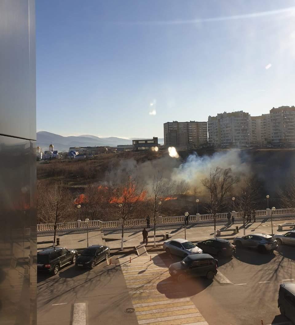 В Новороссийске горят пруды за «Южным» рынком