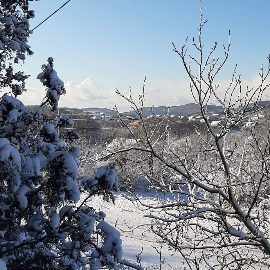 В Новороссийске — снег!