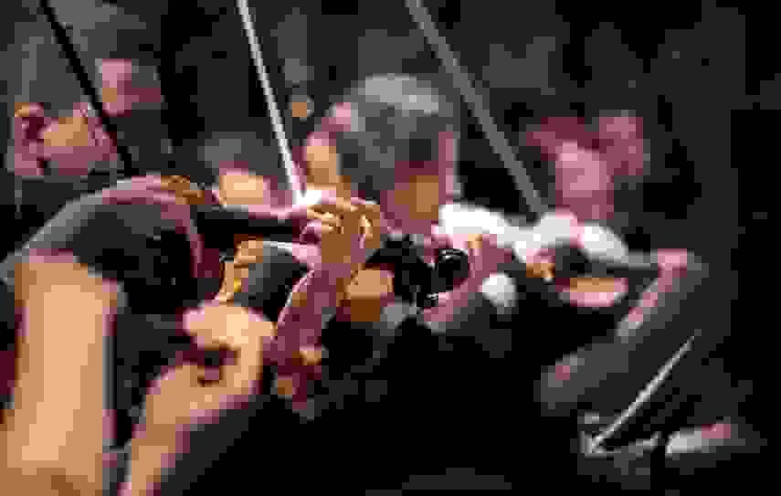 Новороссийск развивается как центр классической музыки