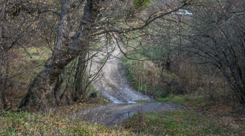 Раевке тоже нужны хорошие дороги!