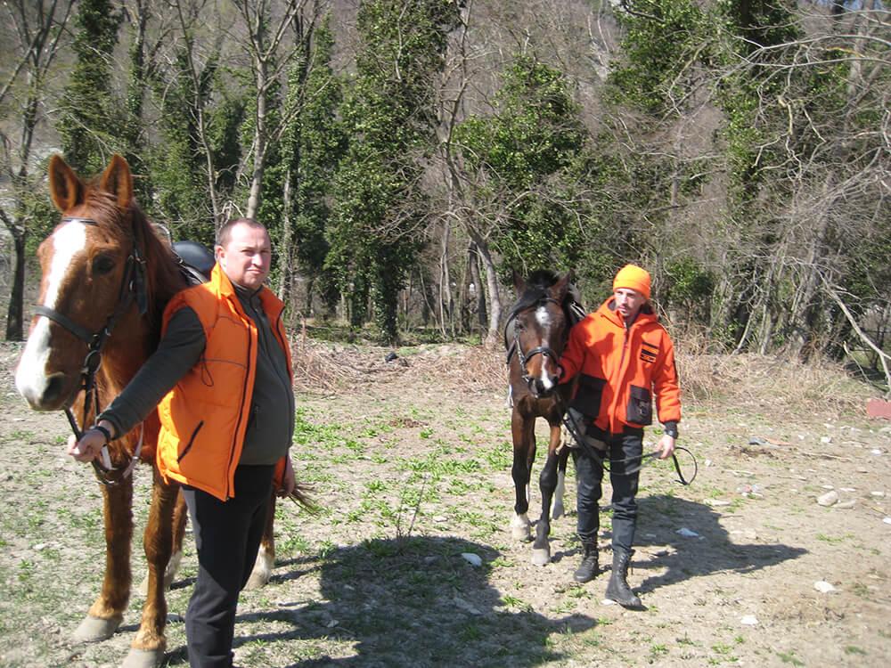 «Лиза Алерт» пересела на лошадей для поиска людей