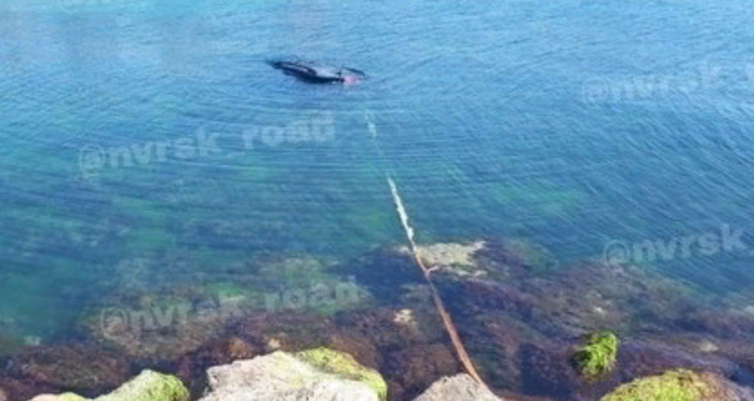 В Новороссийске рыбак утопил свой кроссовер в море