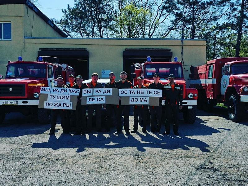 На территории Краснодарского края усилено патрулирование лесов