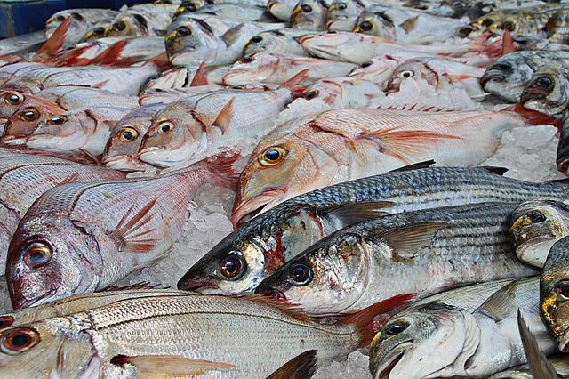 «Новороссийская рыбная компания» привезет не только рыбу, но и мясо — бесплатно и со скидкой