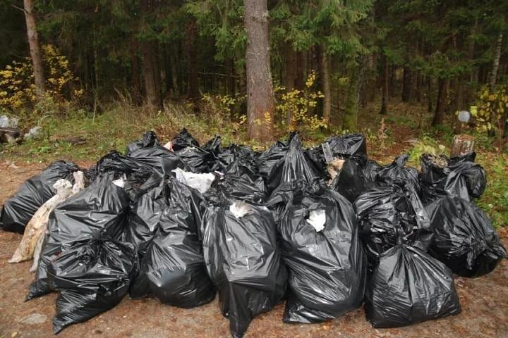В Новороссийске стали массово появляться мусорные свалки