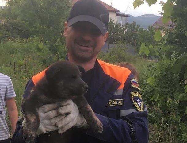 В Новороссийске у котов и собак появились персональные спасатели