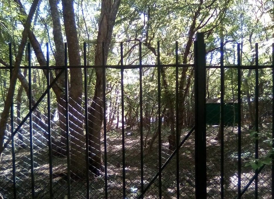 В лесу под Новороссийском корреспондент «НР» нашел усадьбу с оленями. Эстетика состоятельных людей?