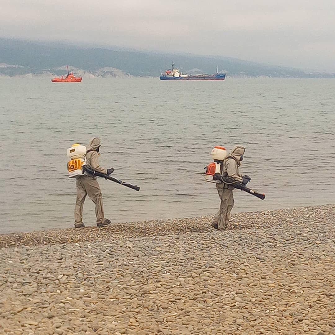 Зачем в Новороссийске дезинфицируют морской берег у самой кромки воды?
