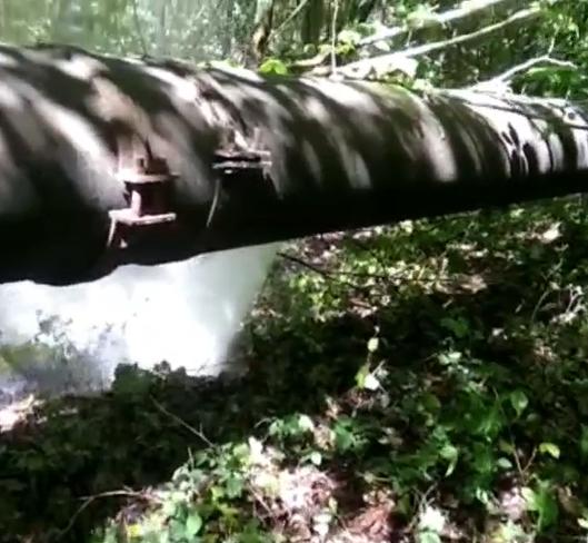 Новороссийцы остро реагируют даже на прорыв трубы с технической водой