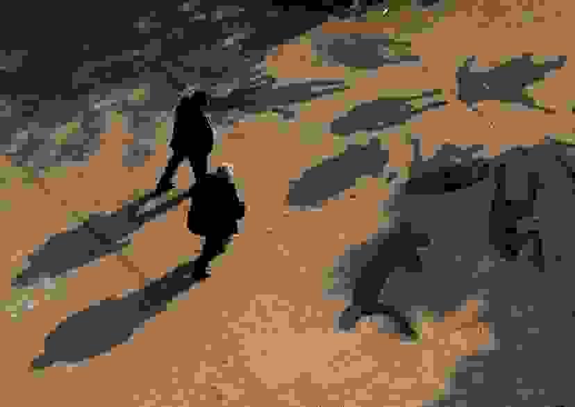 Новороссийские фотографы искали вдохновение в тенях
