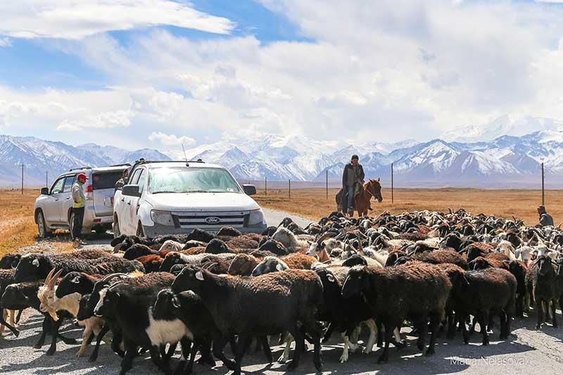 Путешествие новороссийских путешественников по Памиру: жизнь без налета цивилизации