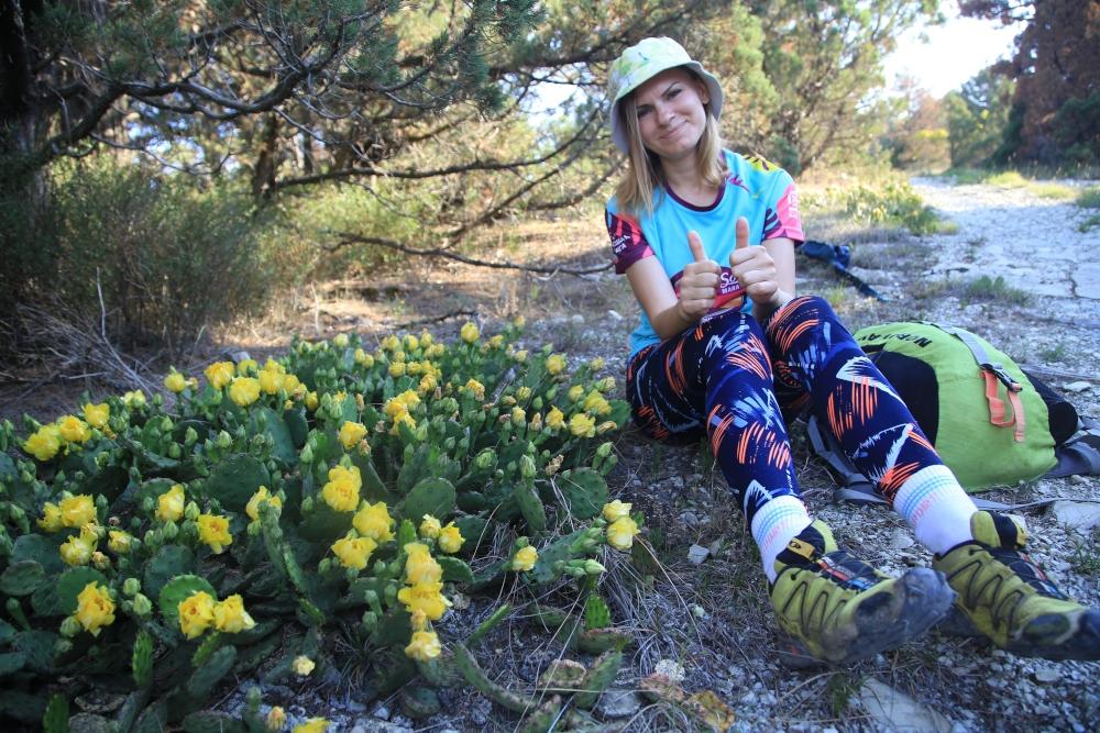 Вокруг Новороссийска пожелтели горы: на Маркотхе зацвели кактусы
